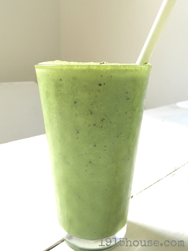 "A Low Carb MInt Chip Smoothie so good you'll want to drink it even if you're not into the Low Carb thing! Creamy, minty, chippy deliciousness....and chock full of good-for-you ingredients. The perfect ""as you're running out the door"" meal that won't expand your waistline. (THM S)"