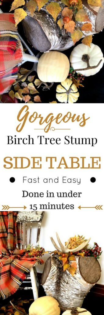 Bring in the perfect touch of Nature with a tree stump side table. Fast and easy, you can have it ready to grace your home in under 15 minutes. Click here for my one big tip-