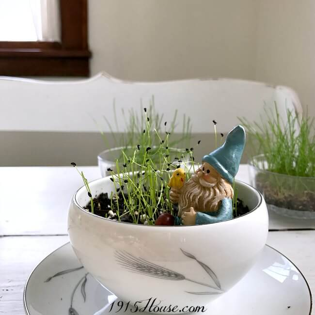 Fabulous tips and tricks I can use in my home to decorate for Spring!