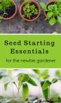Seed Starting Essentials for the Novice gardener - and helpful links for inspiration!