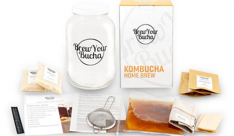 Kombucha Brewing for Beginners