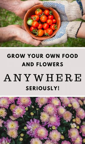 "This is the answer to your ""no space"" garden problem! Grow all the things - Anywhere!"